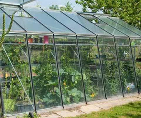Tout savoir sur les serres de jardin : en verre ...