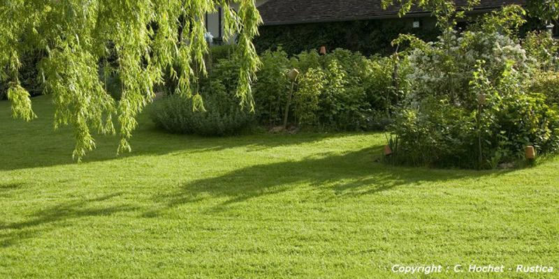 Entretenir et tondre sa pelouse
