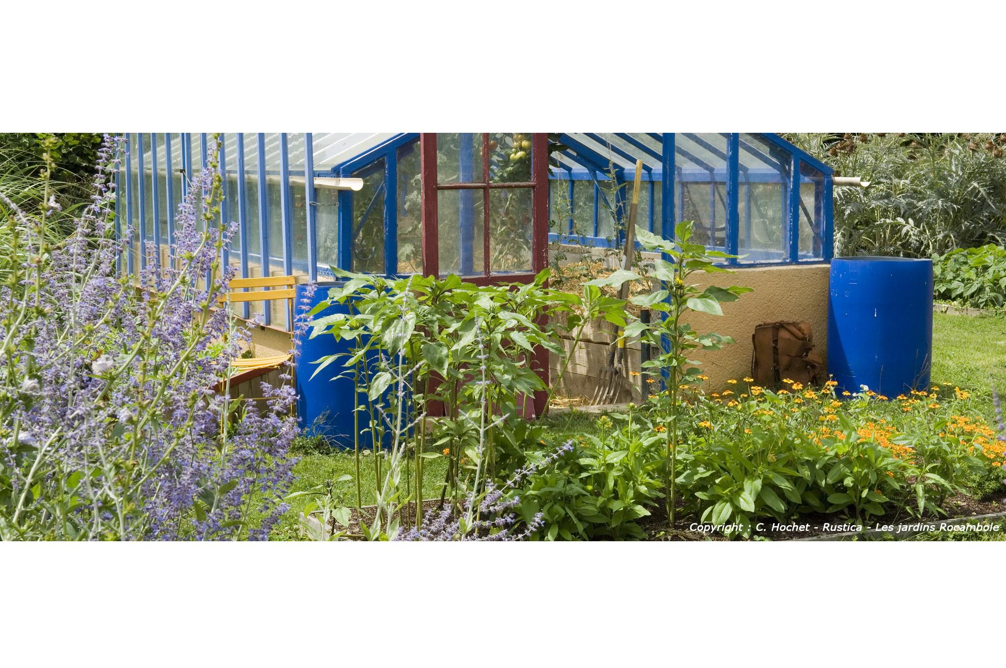 Arrosage en été - Guide des bonnes pratiques | Blog jardin