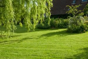 Pelouse de jardin