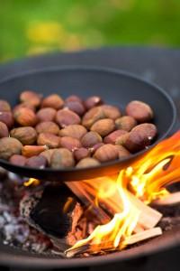 Brasero grill 3