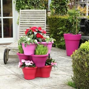 Pots de fleurs rose sur terrasse