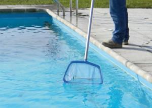 Épuisette pour nettoyer les débris flottant sur l'eau de la piscine