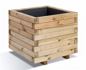 Planter un citronnier en pot