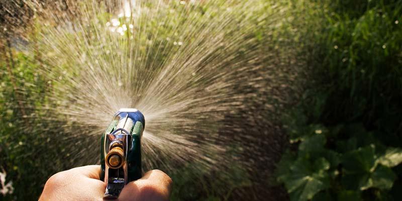 Quand et comment arroser ses plantes en t - Comment bien arroser ses plantes ...