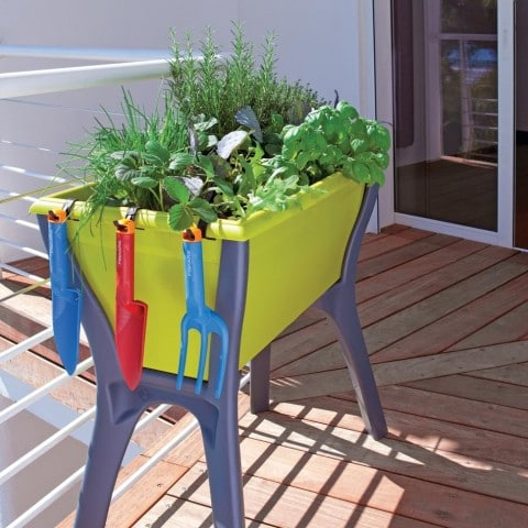 jardinière surélevée pour plantation herbes aromatiques