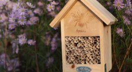 Hôtel en bois pour abeilles