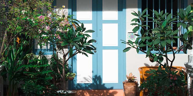Aménager la terrasse avec des fleurs et des arbres