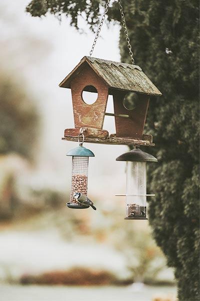 Mangeoire pour oiseaux à suspendre