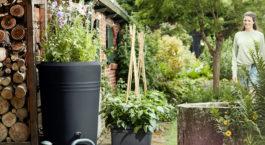 Comment entretenir un récupérateur d'eau de pluie ?