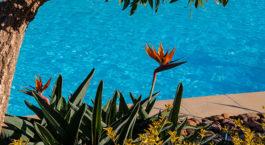Choisir une pompe à chaleur pour piscine
