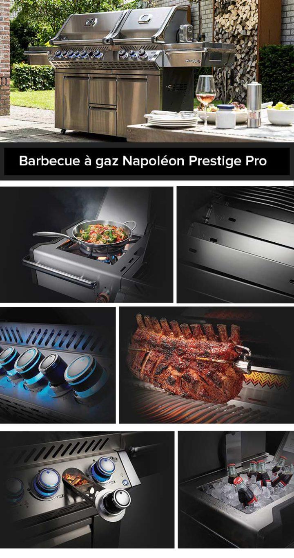 presentation-barbecue-gaz-napoleon-prestige-pro