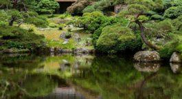 Déco de bassin de jardin