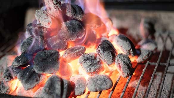 Briquette de bois